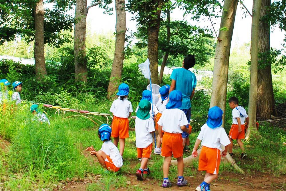 利根二葉幼稚園 山林